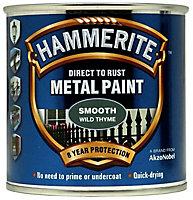 Hammerite Wild thyme Gloss Metal paint, 0.25L