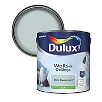 Dulux Mint macaroon Silk Emulsion paint, 2.5L