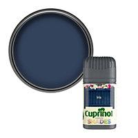 Cuprinol Garden shades Iris Matt Wood paint, Tester pot