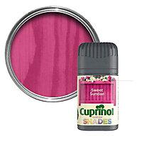 Cuprinol Garden shades Sweet sundae Matt Wood paint, Tester pot