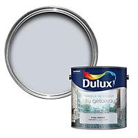 Dulux Travels in colour Steel parade grey Matt Emulsion paint 2.5L
