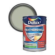Dulux Weathershield Frosted lake Smooth Matt Masonry paint 5L