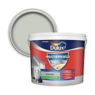 Dulux Weathershield Frosted lake Smooth Matt Masonry paint 10L