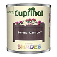 Cuprinol Garden shades Summer Damson Matt Wood paint, 125ml Tester pot