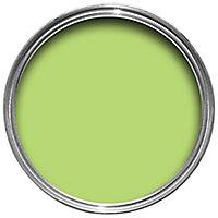 Ronseal Garden Lime zest Matt Metal & wood paint, 0.25L