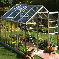 6x8 Horticultural glass Apex Greenhouse