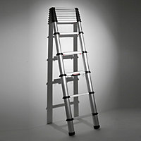 Telesteps Telescopic 12 tread Extension ladder