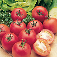 Suttons Tomato Seeds, Alicante Mix