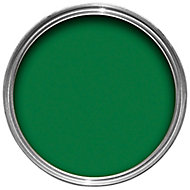 Hammerite Buckingham green High gloss Garage door paint 750 ml