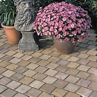 Autumn green Natural Sandstone Paving setts (L)100mm (W)100mm, Pack of 750, 8.8 m²