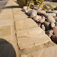 Fossil buff Natural Sandstone Paving setts (L)100mm (W)100mm, Pack of 750, 8.8 m²
