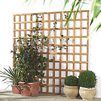 Grange Traditional Square Trellis panel (W)0.91m (H)1.83m