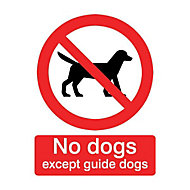 No dogs except guide dogs Self-adhesive labels, (H)100mm (W)100mm
