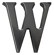 The House Nameplate Company Brushed Silver effect Aluminium Self-adhesive House letter W, (H)40mm (W)25mm