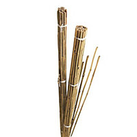Gardman Bamboo Cane 184cm, Pack of 10