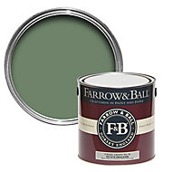 Farrow & Ball Estate Calke green No.34 Matt Emulsion paint, 2.5L
