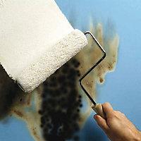 Zinsser B-I-N White Matt Primer Sealer 1L