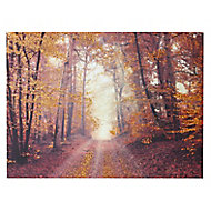 Autumn woodland Copper Canvas art (H)570mm (W)770mm