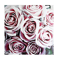 Roses Blush Canvas art (H)900mm (W)900mm