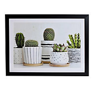 Cactus Green Framed print (H)300mm (W)400mm