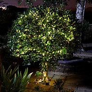 Solar Firefly Solar-powered Warm white 50 LED Outdoor String lights