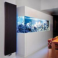 Jaga Iguana Aplano Vertical Designer radiator Anthracite (H)1800 mm (W)410 mm