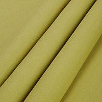 Zen Lime Plain Unlined Eyelet Curtains (W)117cm (L)137cm, Pair