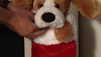 Battery operated Singing puppy Stocking