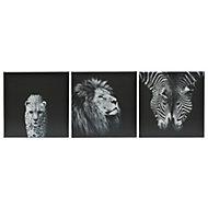 Animals Black & white Canvas (W)900mm (H)300mm