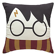 Harry Potter Face Multicolour Cushion