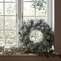 50cm Frosted Wreath