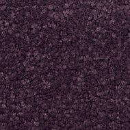 Colours Plum Carpet tile, (L)50cm