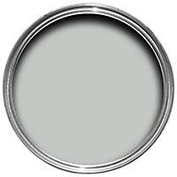 Colours Standard Light rain Silk Emulsion paint 2.5L
