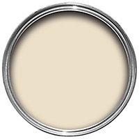 Colours One coat Ivory Satin Metal & wood paint, 0.75L