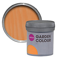 Colours Garden Harvest Matt Wood stain, 0.05L