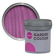 Colours Garden Fuchsia Matt Woodstain 0.05L