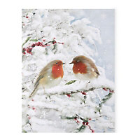 Battery operated Twinkling Robin Fibre optic canvas