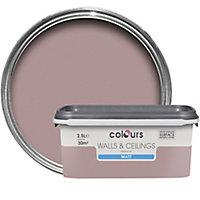 Colours Standard Muted rose Matt Emulsion paint 2.5L