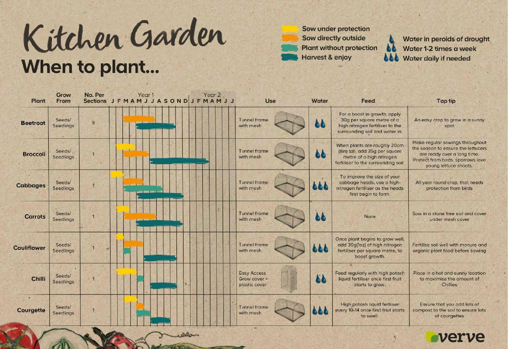 Seed calendar