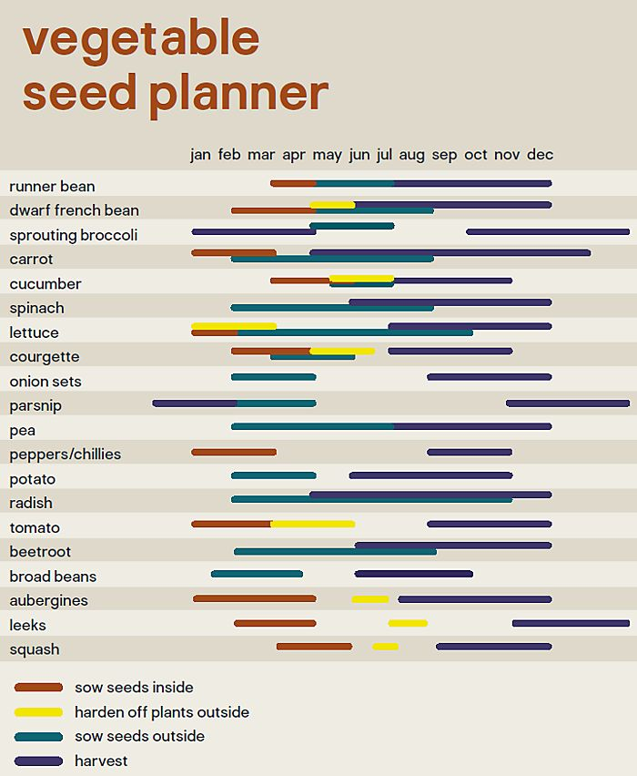 Seed planner