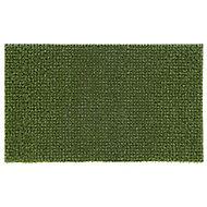 Artificial grass Green Polyethylene Door mat (L)0.75m (W)0.45m