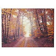 Autumn woodland Copper Canvas art (H)570mm (W)770mm
