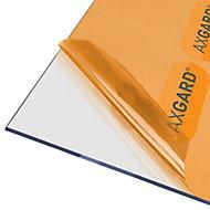 AXGARD Clear Polycarbonate Flat Glazing sheet, (L)1.24m (W)0.62m (T)4mm