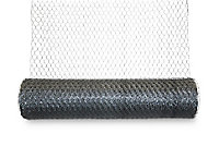 Blooma Galvanised Steel Triple torsion mesh, (L)10m (W)1m (2200g)