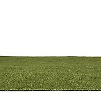 Boronia Artificial grass 8m² (T)8mm