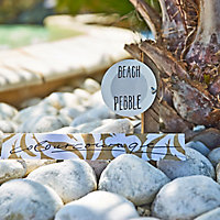 colourcourage Beach pebble Matt Emulsion paint 2.5
