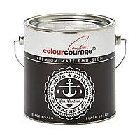 colourcourage Black board Matt Emulsion paint 2.5