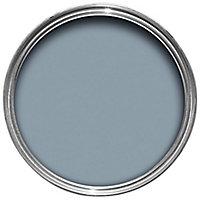 colourcourage Le chat gris Matt Emulsion paint 2.5