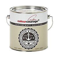 colourcourage Soft grey Matt Emulsion paint 2.5