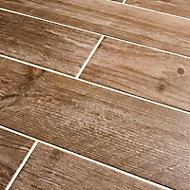 Cotage wood Light brown Matt Wood effect Porcelain Floor & wall Tile Sample